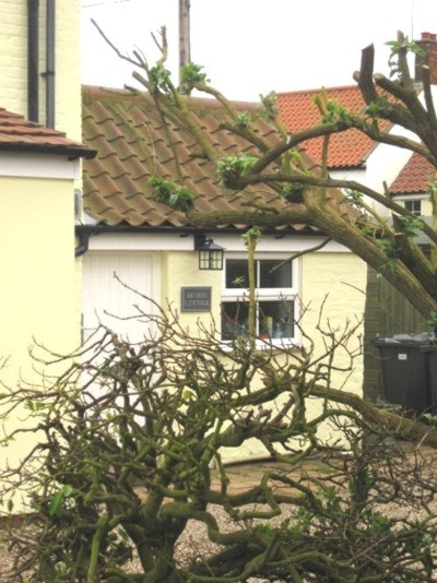 Henrys Cottage, Winterton-on-Sea